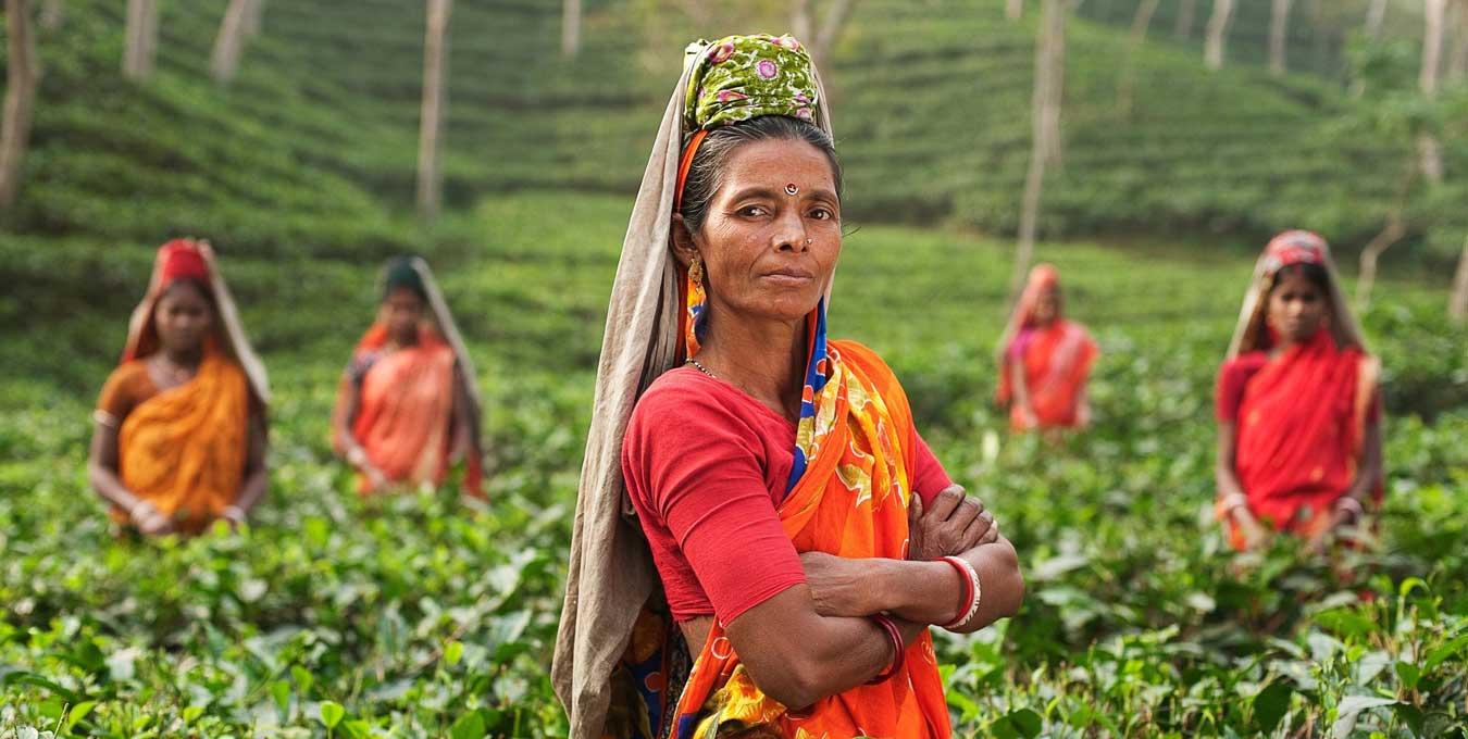 Women Empowerment and Employment